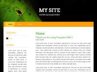 Скачать бесплатный шаблон для Template CMS 2.04